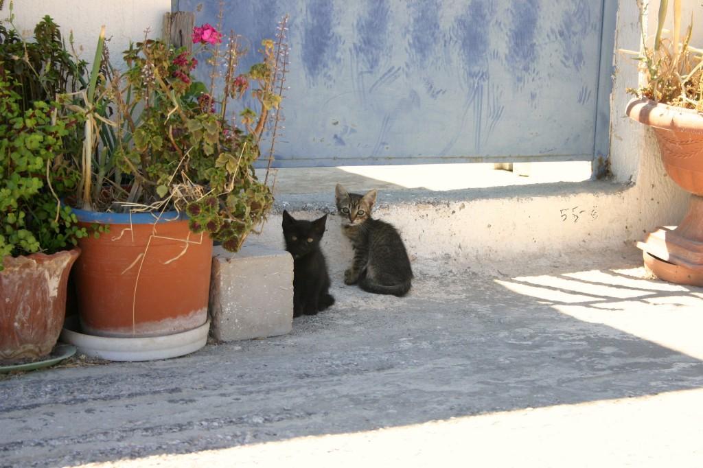 Santorini 2011 002