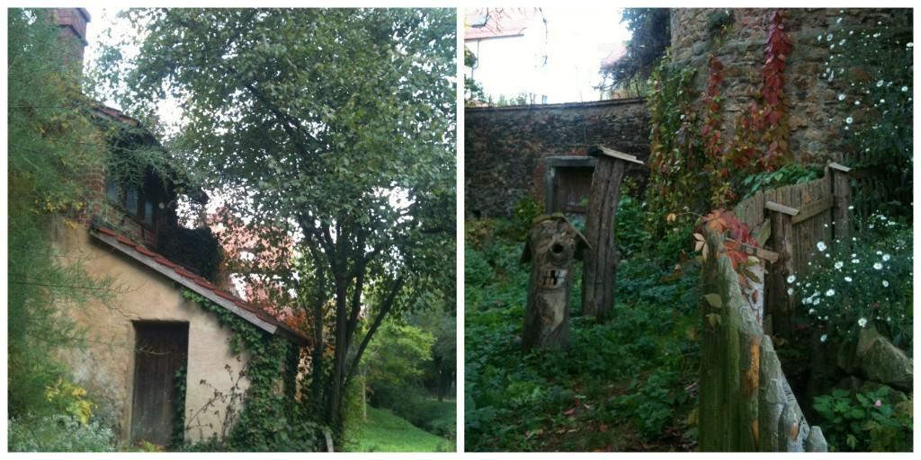 strange little garden