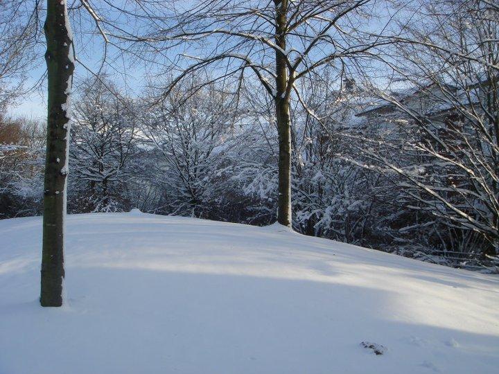 Winter20103